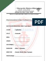 FORMATO DE PROGRAMACIÓN