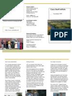 CDI Brochure2