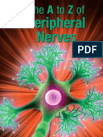 The A to Z of Peripheral Nerves