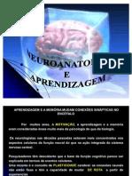 Neuroanatomia e Aprendizagem-ultimo