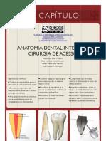 1 Anatomia ProApice