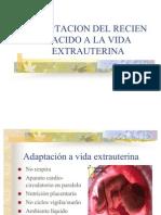 Adaptacion Del Recien Nacido a La Vida Extrauterina