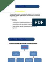 anatomia_o_Sistema_Imunitario[1]