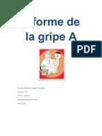 Informe de La Gripe A