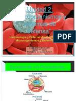 Materia COEF2-IV°