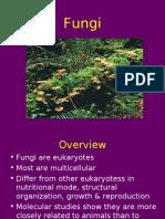 fungi-100322131057-phpapp01