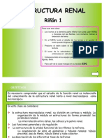 rinon1estruct
