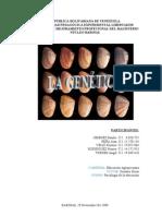 Informe de Gentica Completo. w 2003