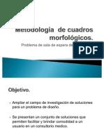 Metodología  de cuadros morfológicos