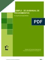Ejemplo Manual Procedimientos y Capacitacion