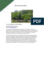 Area Protegida Las Iguanas y Punta Condega