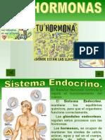 Hormonas 3ºmedio