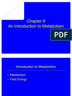 An Introduction to Metabolism