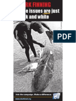 Shark Finning Leaflet