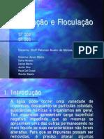 Coagula__o_e_Flocula__o