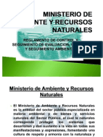 Ministerio de Ambiente y Recursos Naturales Presentacion