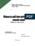 Misiune de Audit Intern