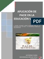 Aplicación de PACIE en la Educación Virtual