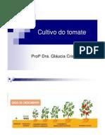 Cultura Do Tomate-fag