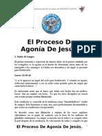 El Proceso de Agonia de Jesus