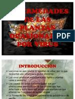 Enfermedades de Las Plantas Ocasionadas Por Virus Final