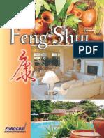 Lectie Demo Feng Shui