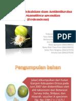 jurnal farmakognosi