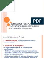 2011-Conhecimento Explicito Da Lingua(4)