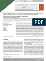 Variable Epitope Libraries- New Vaccine Immunogens Capable of Inducing Broad Human Immunodeficiency Virus Type 1-Neutralizing Antibody Response