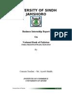 Internship Report Nbp (1)