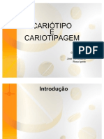 Genetica- caritipo+agem