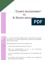 CAMPO ALGODONERO_CONVERSATORIO OAX