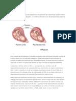 Placenta Abrupta