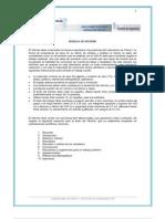 Modelo de Informe (25-04-11)