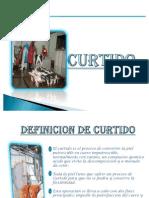 8. Curtido Expo