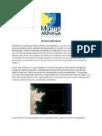 MAMPdeArinaga-Resumen