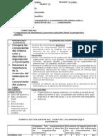 Formato de Planeacion Diplomadojunio