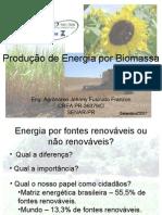 Produção de Energia por Biomassa