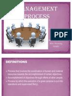 Management Process Pmp