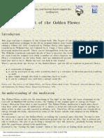 Secret of the Golden Flower Summary