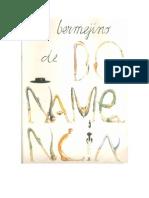 El Bermejino nº 236 aÑo Xx .Especial