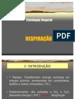24048-Aula_9.1_-_Respiracao