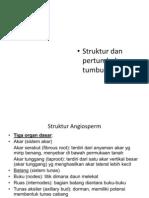 Struktur Dan Fungsi Tumbuhan