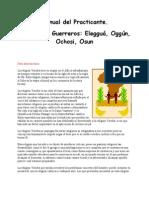 Manual Del Practicante - Los Guerreros