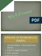 Disease of Pearl Millet