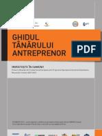 Ghidul tanarului antreprenor