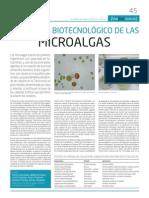 Potencial biotecnológico de las microalgas