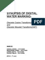 Synopsis of Digital Water Marking