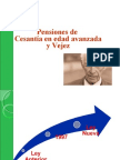 Modulo IMSS Pensiones