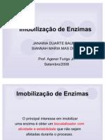 Enzimas_imobilizacao